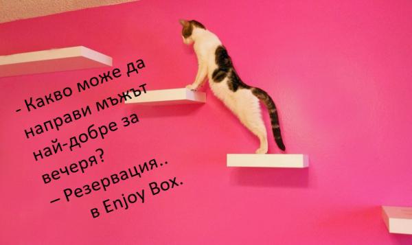 резервации Варна подарък промоции поръчка масажи реджуванс педикюр маникюр грабо ваучер любов подарък котка мъж жена обява търся